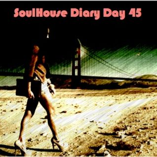 SoulHouse Diary Day 45