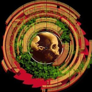 Metacarpus - Drum and Bass_SOLDIER_2013_04_06_
