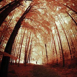 forever-autumn vol.1