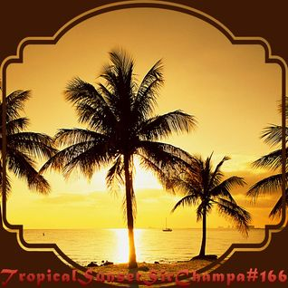 #166 ~ Tropical Sunset