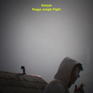 Slimjah - Ragga Jungle Flight