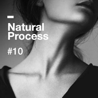 Natural Process #10
