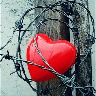 Dj Escape & Mc Biggie - Love Hertz Vol2