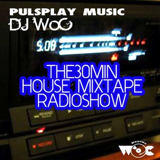 THE30MIN House MixTape Radioshow 04.2013 by DJ WoC