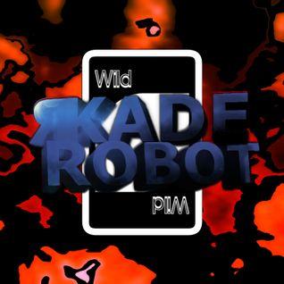 """Wildcard"" Electro-House/Complextro Mix - 33 Min - 13/6/13"