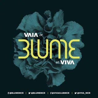 Blume Mcr @ Viva