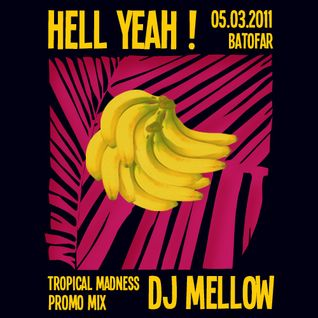 DJ Mellow - Tropical Madness Promo Mix (02-11)