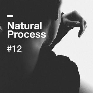 Natural Process #12