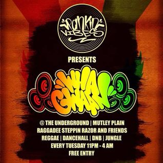Hip Hop ~ Ragga / Reggae Set. Live @ 'The Underground' 29/9/15.