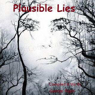 Plausible Lies