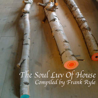 The Soul Luv Of House