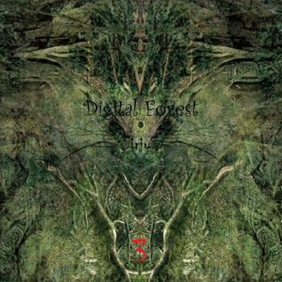 Digital Forest 3