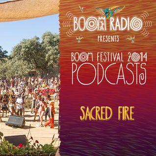 Boom Festival 2014 - Sacred Fire 05 - Carbon Based Lifeforms