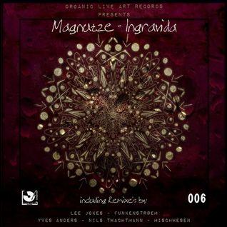 Magnutze - Ingravida (Orignal Mix)
