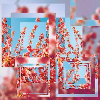 Sackraff b2b rozsomák - Jamming vol.2
