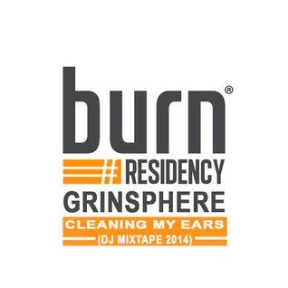 burn Residency 2014 - Cleaning my Ears - Grinsphere