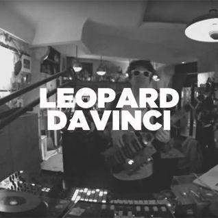 Léopard DaVinci • Live set • LeMellotron.com