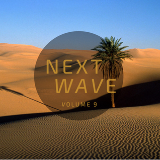 DJ Wiz - Next Wave Vol. 9