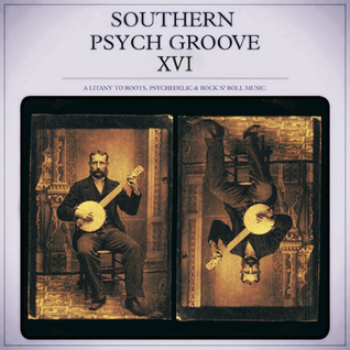 Southern Psych Groove XVI
