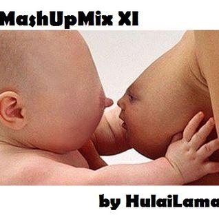 HulajLama_MashUpMix XI (2013 open)