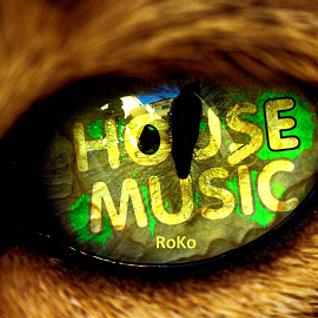House Music....RoKo