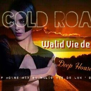 WALID VIE DE LUX - COLD ROAD (DEEP HOUSE MIX)