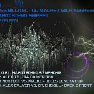 2011-09-02 miss niccitec - du machst mich aggresiv - hardtechno - 162 -165 bpm