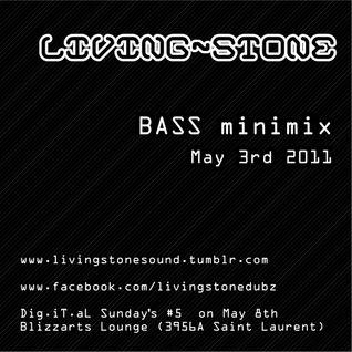 Living~Stone Bass MiniMix May 2011