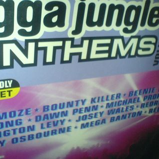 Jungle DNB Anthems 2