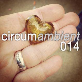 circumambient 014