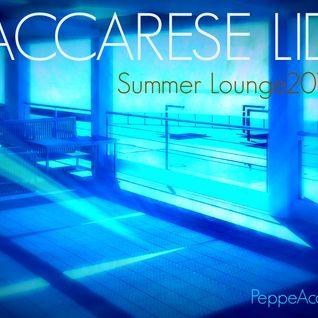 DGroove.Vdj   MACCARESE LIDO  SummerLounge 2014 (PeppeAcampora