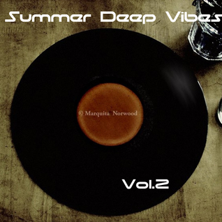 Deep Summer Vibes vol.2 2013