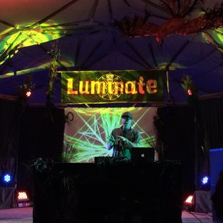 D-sens @ Luminate Festival 2015 - Takaka hills - NZ
