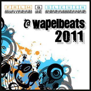 Palm & Slevin @ Wapelbeats 2011 - Die Zweite