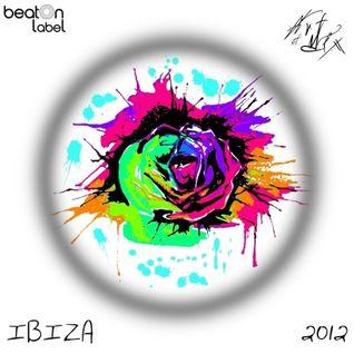 BeatOn IBIZA (ARTofMIX'2012) - mixed by Lui Danzi