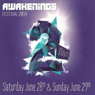 Adam Beyer, Alan Fitzpatrick, Joseph Capriati & Paul Ritch (Live) @ Awakenings Festival 2014 #1