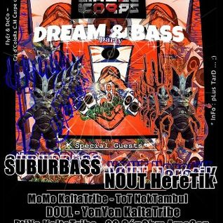 SuBuRbASs Live @ Dream & BaSs with Kaltatribe_near-Nancy/France_12/01/2013