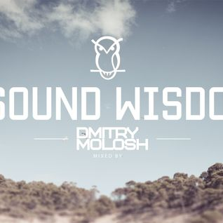 Sound Wisdom 005 - Dmitry Molosh
