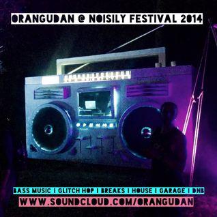 Orangudan @ Noisily Festival 2014