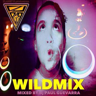 WILDMIX by djPG29