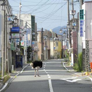 4. Fukushima mon amour