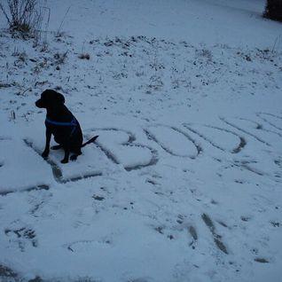 Elbodrop February Mix 2011