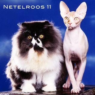 NETELROOS 11