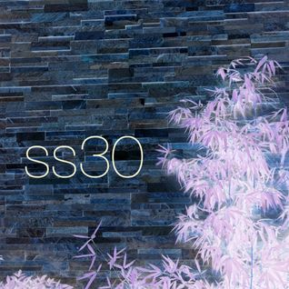 SS:30