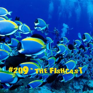 Toadcast #209 - The Fishcast