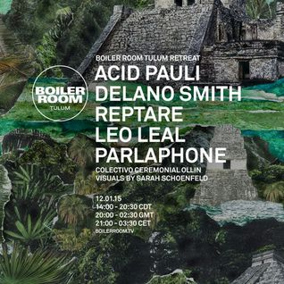 Acid Pauli: Boiler Room Tulum DJ Set