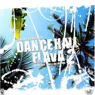 DJ Danyo - Dancehall Flava Vol. 2