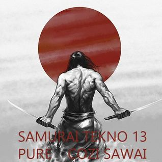 SAMURAI TEKNO 13