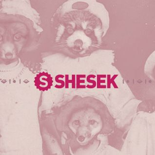The take cover 025 - Shesek Session II