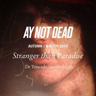 Dr Trincado / Stranger Than Paradise